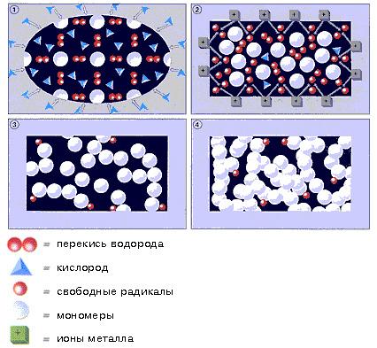 Полимеризация фиксатора