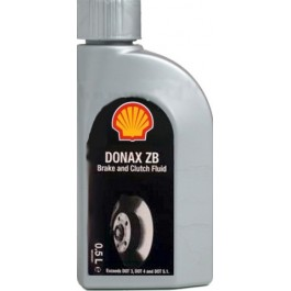 Shell Donax ZB